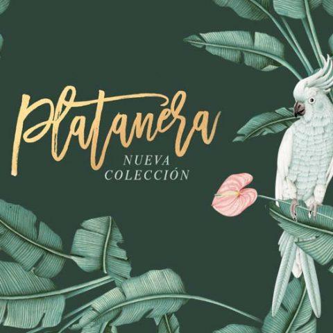 NUEVA-COLECCION-platanera-botanica