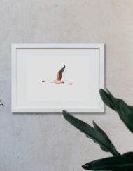 acuarela-botanica-donana-enmarcada-decoracion-marco-horizontal-flamenco3