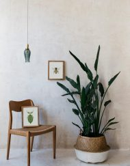Ilustracion-acuarela-botanica-insectos-abeja-enmarcada-madera2