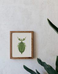 Ilustracion-acuarela-botanica-insectos-hoja-enmarcada-madera