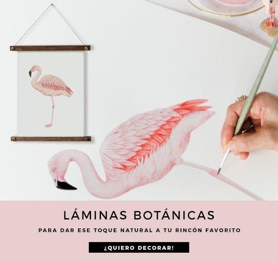 HOME-destacado-cuadrado-laminas-botanicas