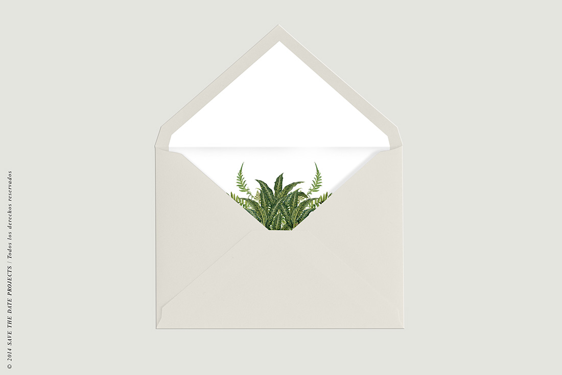 SOBRE-BLANCO-FORRO-HELECHO-invitacion-helechos