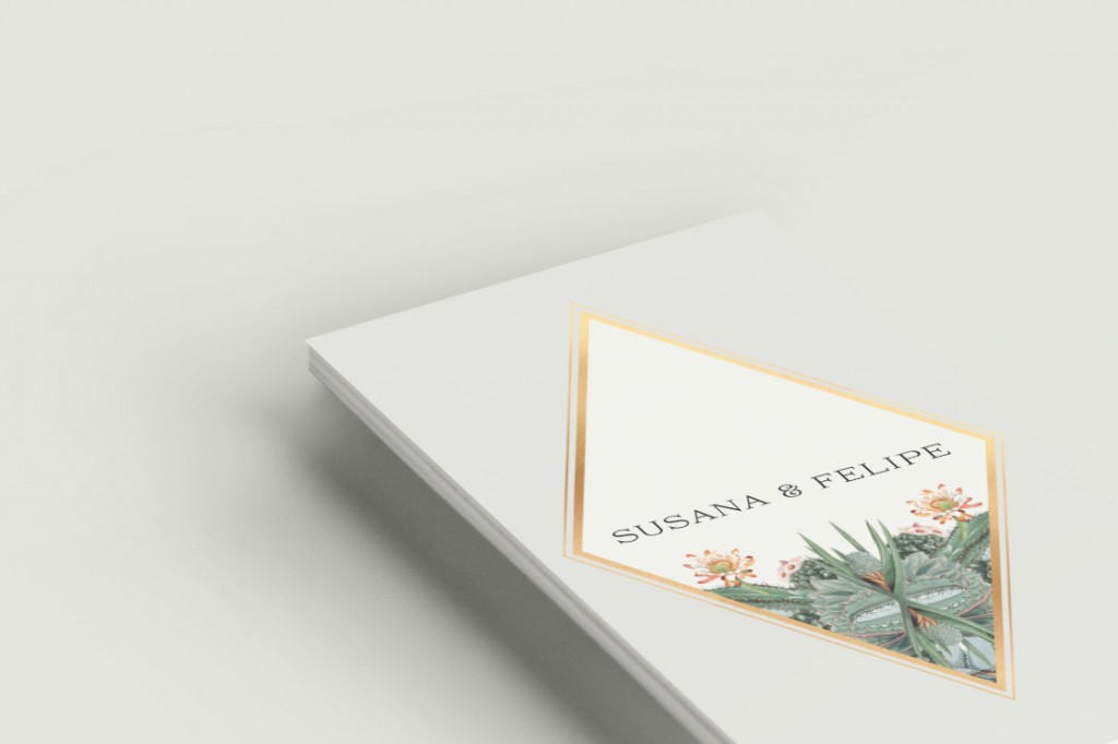 invitaciones-boda-online-cactus-lista-bodas-ANV-detalle