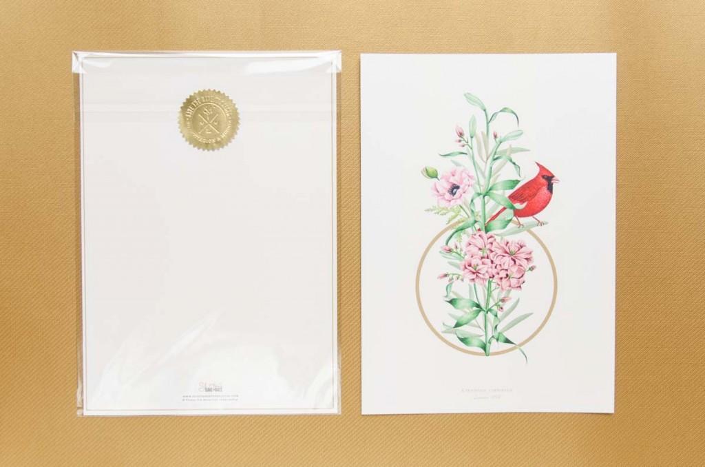 Lamina con dibujo en Acuarela-Cardinal-Empaquetado-A4