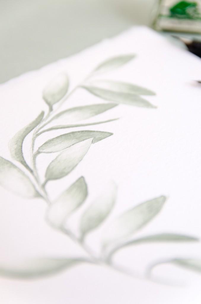 Detalle Ramitas de olivo en acuarela