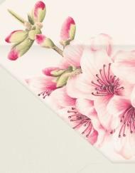 Sobres-con-forro-invitaciones-de-boda-romanticas-DETALLES-SHOP_SOBRE-MONTADO_romantica-cerezas