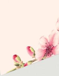 invitaciones-de-boda-romantica-cerezos-marca-sitios-DETALLE