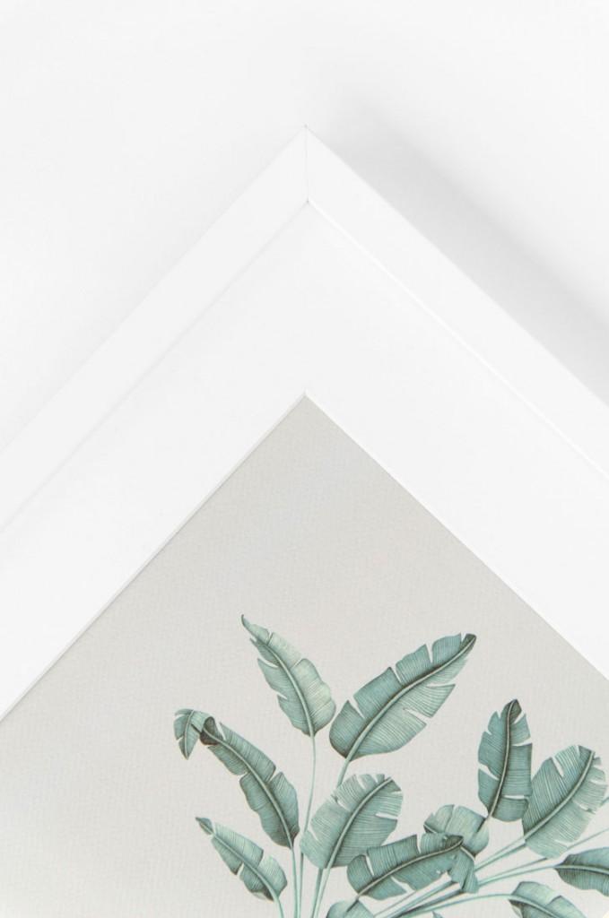 Detalles de boda laminas en acuarela regalo - ilustracion platanera acuarela (5)