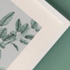 Detalles de boda originales lamina decoracion acuarela loro platanera planta - Coleccion platanera (3)