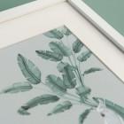 Detalles de boda originales lamina decoracion acuarela loro platanera planta - Coleccion platanera (5)