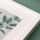 Detalles de boda originales lamina decoracion acuarela loro platanera planta - Coleccion platanera (6)