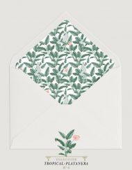 sobre-con-forro-acuarela-TROPICAL-PLATANERA-4-pattern
