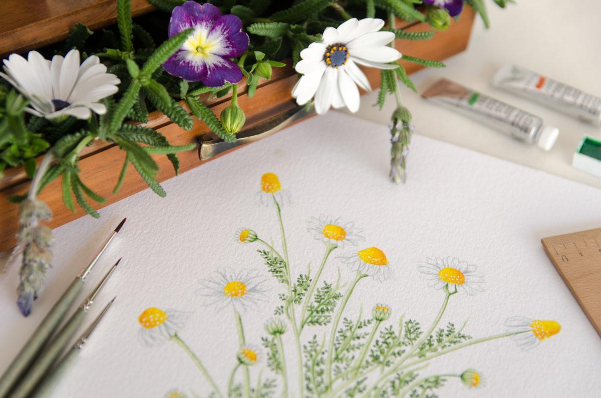invitaciones-de-boda-botanica-acuarela-12