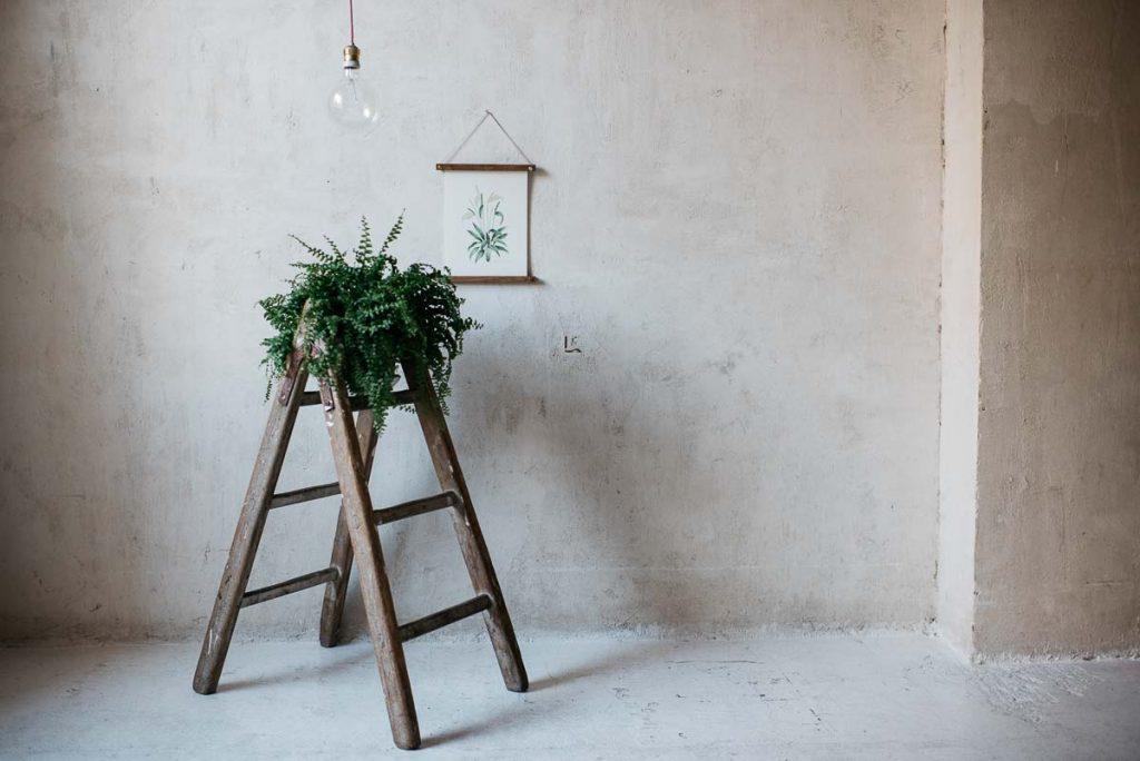 Acuarela botánica: Tus láminas más especiales a un click!