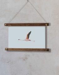 acuarela-botanica-donana-enmarcada-decoracion-bastidor-horizontal-suelto-flamenco3