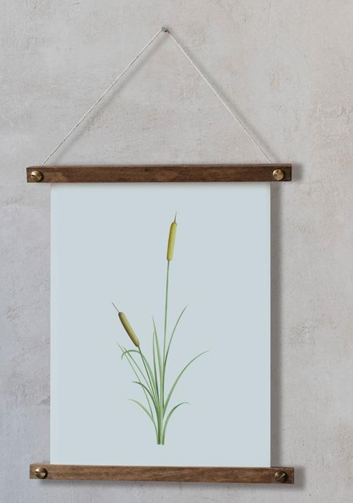 acuarela-botanica-donana-enmarcada-decoracion-bastidor-vertical-suelto-juncus