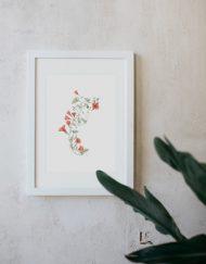 acuarela-botanica-donana-enmarcada-decoracion-marco-correhuela