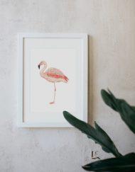 acuarela-botanica-donana-enmarcada-decoracion-marco-flamenco