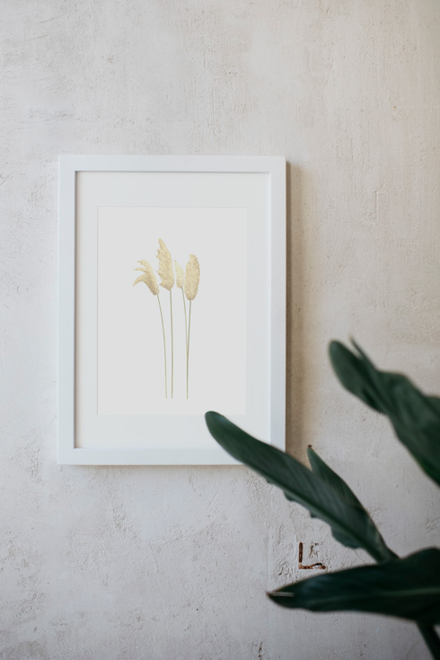 acuarela-botanica-donana-enmarcada-decoracion-marco-herbe-pampa