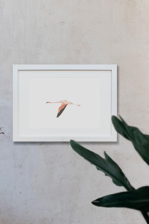 acuarela-botanica-donana-enmarcada-decoracion-marco-horizontal-flamenco2