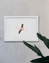 acuarela-botanica-donana-enmarcada-decoracion-marco-horizontal-flamenco4