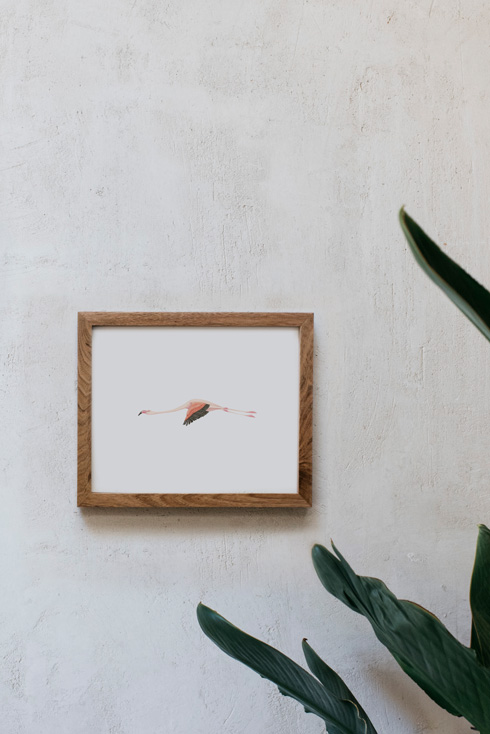 acuarela-botanica-donana-enmarcada-decoracion-marco-horizontal-madera-flamenco1