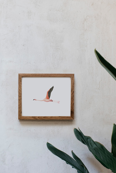 acuarela-botanica-donana-enmarcada-decoracion-marco-horizontal-madera-flamenco3