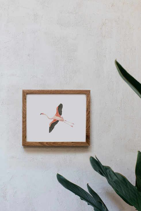 acuarela-botanica-donana-enmarcada-decoracion-marco-horizontal-madera-flamenco4