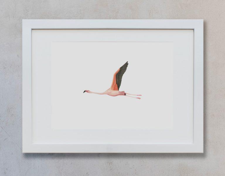 acuarela-botanica-donana-enmarcada-decoracion-marco-horizontal-suelto-flamenco3