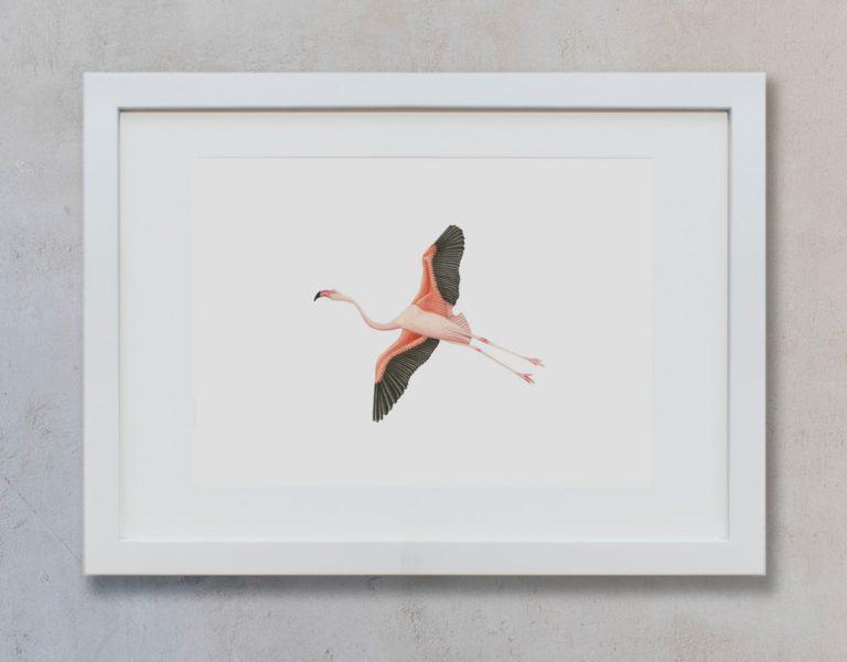 acuarela-botanica-donana-enmarcada-decoracion-marco-horizontal-suelto-flamenco4