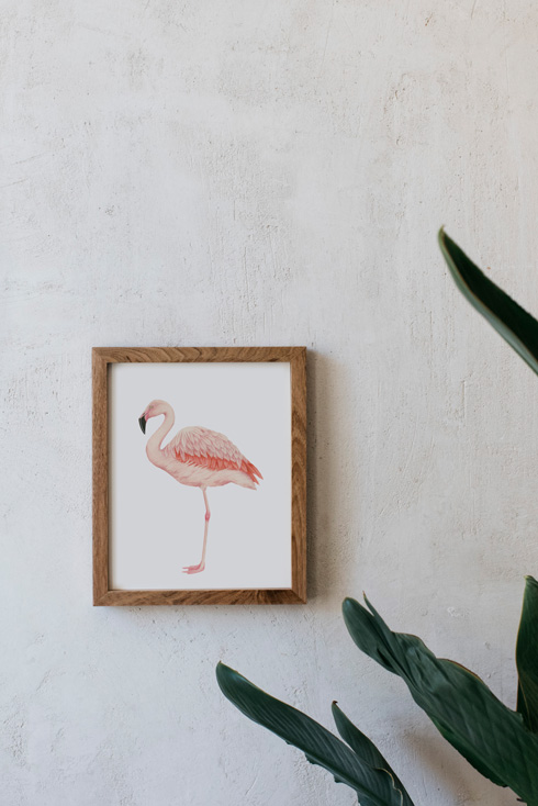 acuarela-botanica-donana-enmarcada-decoracion-marco-madera-vertical-flamenco