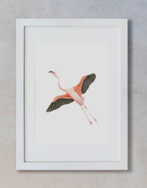 acuarela-botanica-donana-enmarcada-decoracion-marco-vertical-suelto-flamenco-volando