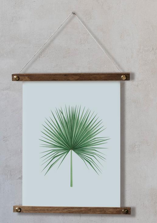 acuarela-botanica-tropical-enmarcada-decoracion-bastidor-vertical-suelto-camaerops