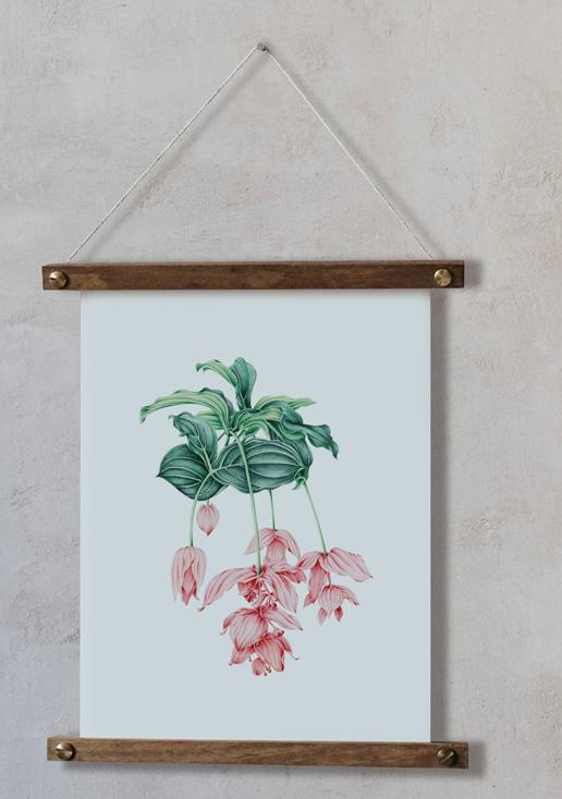 acuarela-botanica-tropical-enmarcada-decoracion-bastidor-vertical-suelto-medinilla