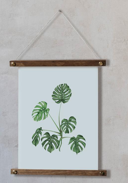 acuarela-botanica-tropical-enmarcada-decoracion-bastidor-vertical-suelto-monstera