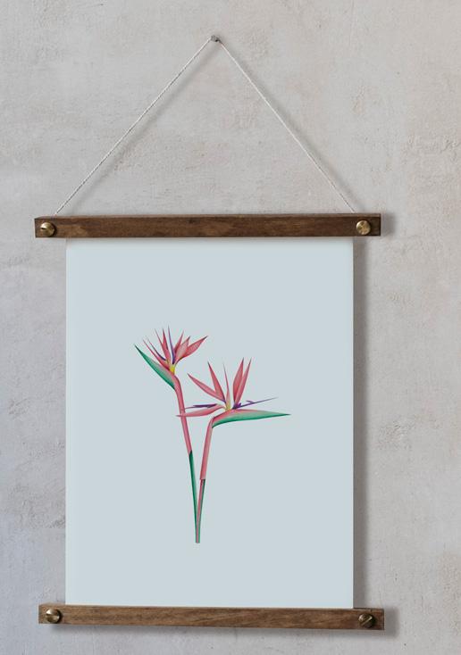 acuarela-botanica-tropical-enmarcada-decoracion-bastidor-vertical-suelto-strelitzia
