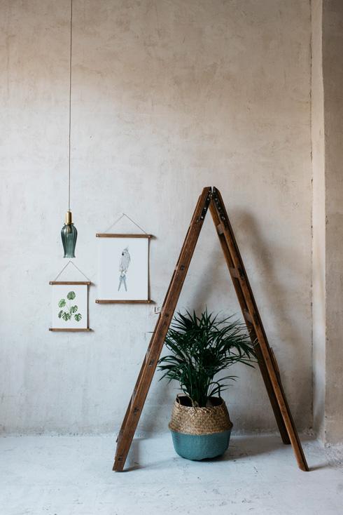 acuarela-botanica-tropical-enmarcada-decoracion-bastidores-loro-azul-monstera