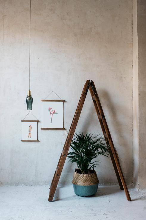 acuarela-botanica-tropical-enmarcada-decoracion-bastidores-loro-naranja