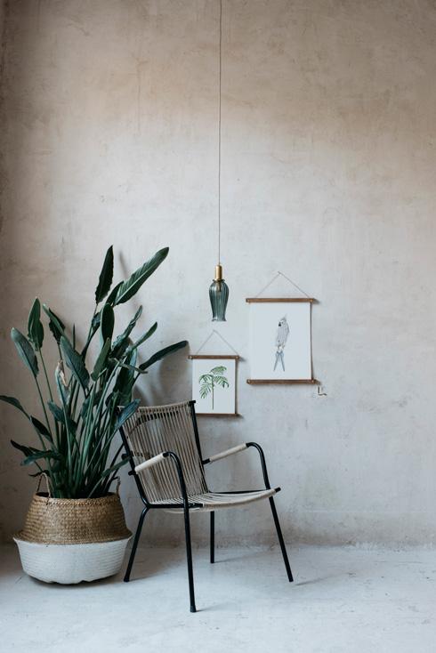 acuarela-botanica-tropical-enmarcada-decoracion-bastidores-silla-loro-azul