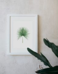 acuarela-botanica-tropical-enmarcada-decoracion-marco-camaerops