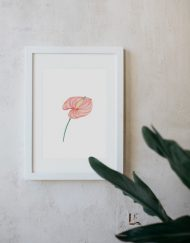 acuarela-botanica-tropical-enmarcada-decoracion-marco-lirio