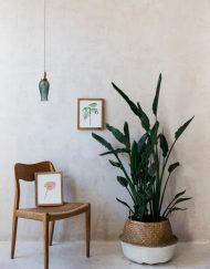 acuarela-botanica-tropical-enmarcada-decoracion-marco-lirio-ravenea