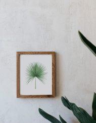 acuarela-botanica-tropical-enmarcada-decoracion-marco-madera-vertical-camaerops