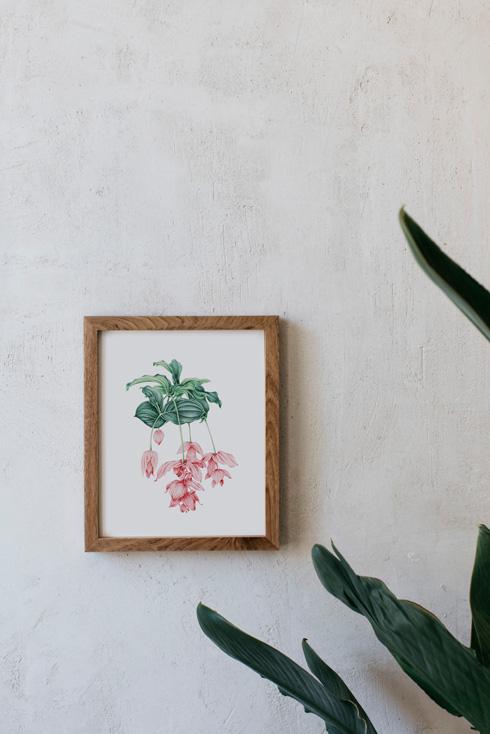 acuarela-botanica-tropical-enmarcada-decoracion-marco-madera-vertical-medinilla