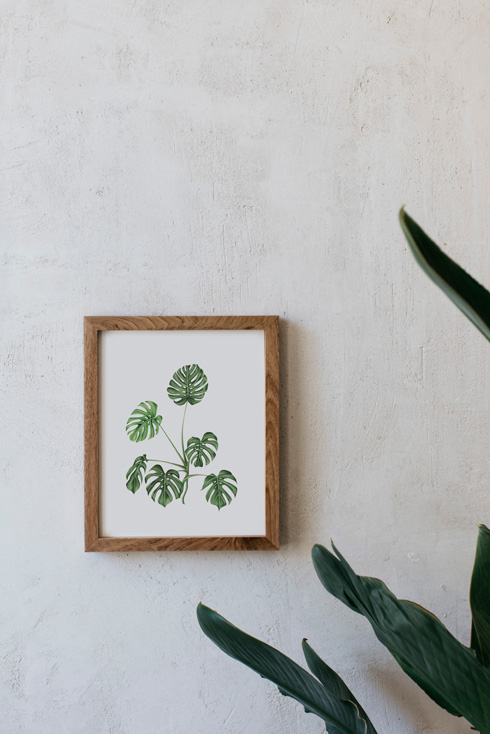 acuarela-botanica-tropical-enmarcada-decoracion-marco-madera-vertical-monstera