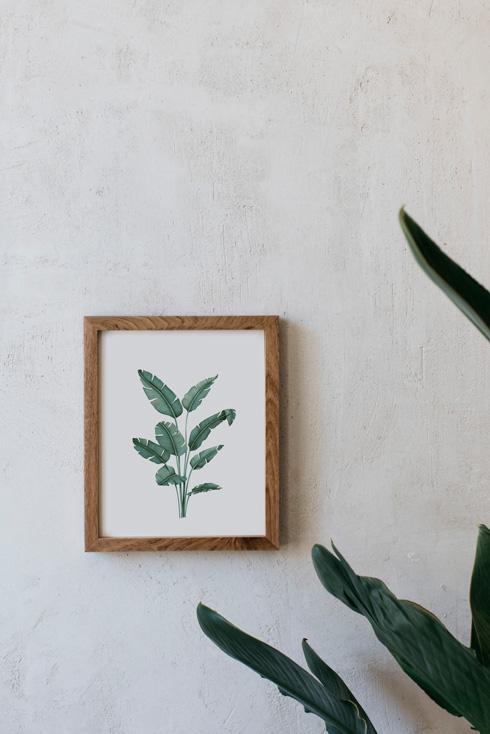 acuarela-botanica-tropical-enmarcada-decoracion-marco-madera-vertical-paradisiaca