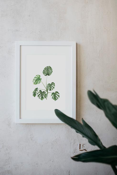 acuarela-botanica-tropical-enmarcada-decoracion-marco-monstera