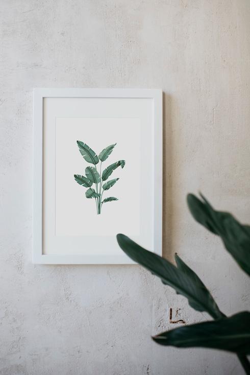 acuarela-botanica-tropical-enmarcada-decoracion-marco-paradisiaca