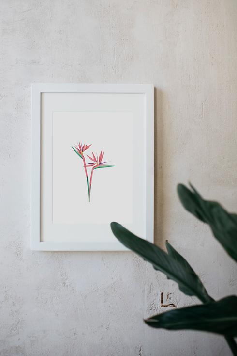 acuarela-botanica-tropical-enmarcada-decoracion-marco-paraiso