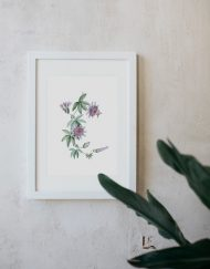 acuarela-botanica-tropical-enmarcada-decoracion-marco-passiflora